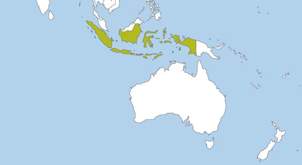 Maris Projects projecten Indonesië